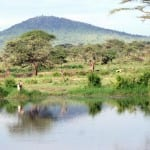Bestig Kilimanjaro